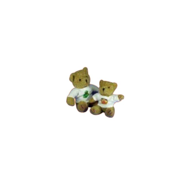 Osito de Peluche Con Foto Personalizada